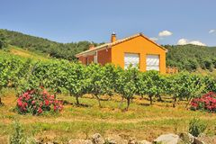 Vineyard home, Gorges du Tarn, France. A vineyard home above the river Tarn, near Pyreleau, on the D907 road. All south facing slopes in these mountains have royalty free stock photos