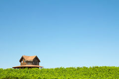 Vineyard and house. Beautiful vineyard and winery at Sonoma County, California Royalty Free Stock Photo