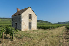 Vineyard house in Beaune Stock Images