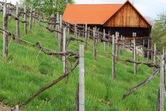 Vineyard House. In Styria, Austria Royalty Free Stock Photo