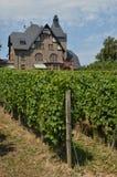 Vineyard house Stock Photos
