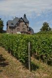 Vineyard house Royalty Free Stock Photo