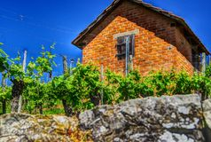 Massively bricked vineyard hut. Vineyard hut with brick roof and brick wall, Garden house with red bricks against a blue sky, Clay roof tile, natural stone wall royalty free stock photo