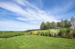Vineyard by Lake Ontario. Vineyard landscape on a sunny day Stock Photo