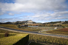 Vineyard Landscape. A view of vineyards with mountains in the background Stock Photography