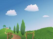 Vineyard Landscape. Vector illustration of a vineyard in the springtime Stock Photography