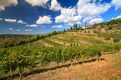 Vineyard landscape in autumn Royalty Free Stock Photos