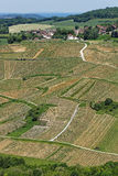 Vineyard landscape in Chateau-Chalon and a village Royalty Free Stock Images