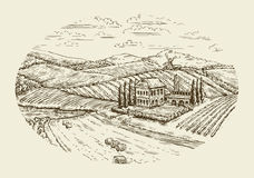 Vineyard landscape. Hand drawn vintage sketch agriculture, farming, farm Stock Photos
