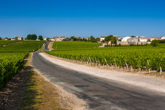 Vineyard landscape near Bordeaux, France Stock Photos