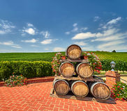 Vineyard Landscape with Wine Barrels Stock Images