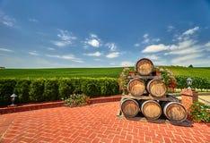 Vineyard Landscape with Wine Barrels Stock Images