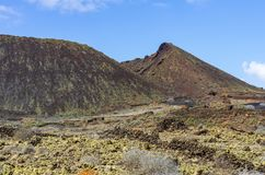 Vineyard on Lanzarote, Caldera Colorada. Canary islands, Spain royalty free stock image