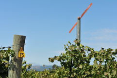 Vineyard with a large fan blade and number 75 Royalty Free Stock Photos