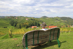 Vineyard. A man taking a break on the top of a vineyard in South-Styria, Austria Stock Photo