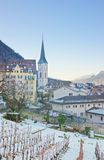 Vineyard and Mountains in Chur at sunrise Stock Image