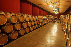 Vineyard Oak Barrels Stock Photos