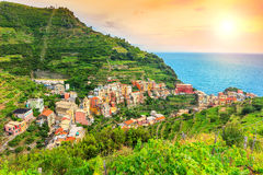 Vineyard and old town of Manarola,Italy,Europe Royalty Free Stock Photo