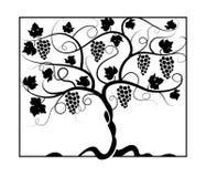 Vineyard_painting royalty free illustration