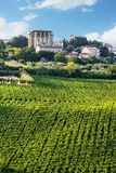 Vineyard and palace in Chieti`s province Royalty Free Stock Photos
