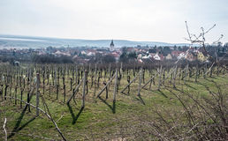 Vineyard with Pavlov village and Nove Mlyny water reservoir in South Moravia Stock Image