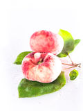 Vineyard peaches with sheets. On a white tray stock photography