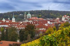 Vineyard of Prague and St Nicholas church Stock Photo