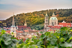 Vineyard of Prague and St Nicholas church Stock Photo