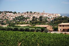 Vineyard in Provence with  village on back. Vineyard in Provence, France with  village on back Royalty Free Stock Images