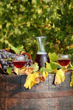 Vineyard red wine Royalty Free Stock Images