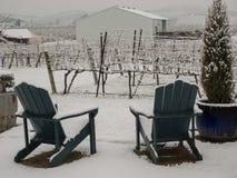 Vineyard rural area in winter Stock Photography