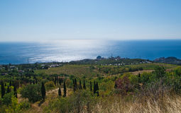 Vineyard and sea Stock Images