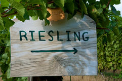Vineyard Sign Riesling Stock Photo