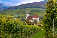 Vineyard in small town in Austria with church in the background. Vineyard in small town in Austria with church and rolling hills in the background during the royalty free stock images