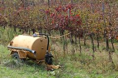 Vineyard with the tanker during the dry season Royalty Free Stock Images