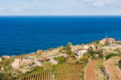 Vineyard terraces in Banyalbufar, Majorca Stock Image