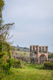 Vineyard and Tower of the Ancient Italian Walled City of Soave. Stock Images