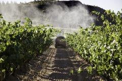 Vineyard tractor sprayer, c. Sprayer tractor vineyards, pollution ecosystem, fruit stock image