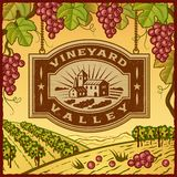 Vineyard Valley Stock Photography