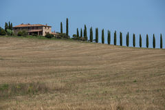 Vineyard villa in Tuscany Italy. A vineyard villa in Tuscany Italy with cypress trees driveway stock photo