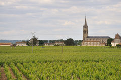 Vineyard and village Royalty Free Stock Images