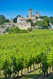 Vineyard and village of Montagne Saint-Emilion Royalty Free Stock Photography