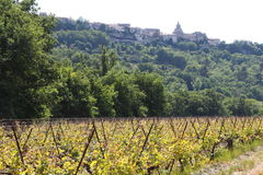 Vineyard and the village Venasque, France Royalty Free Stock Image