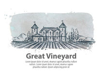 Vineyard, vinery vector logo design template. harvest, crop, yield or farming icon Stock Photography