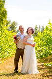 Vineyard Wedding Couple Portrait Royalty Free Stock Images