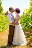 Vineyard Wedding Couple Portrait Stock Image