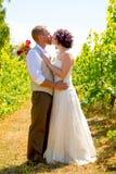 Vineyard Wedding Couple Portrait Stock Image