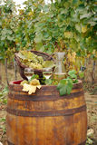 Vineyard and white wine royalty free stock photography