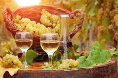 Vineyard and white wine stock image