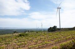Vineyard in Wind Turbine Field - Spain Stock Photos